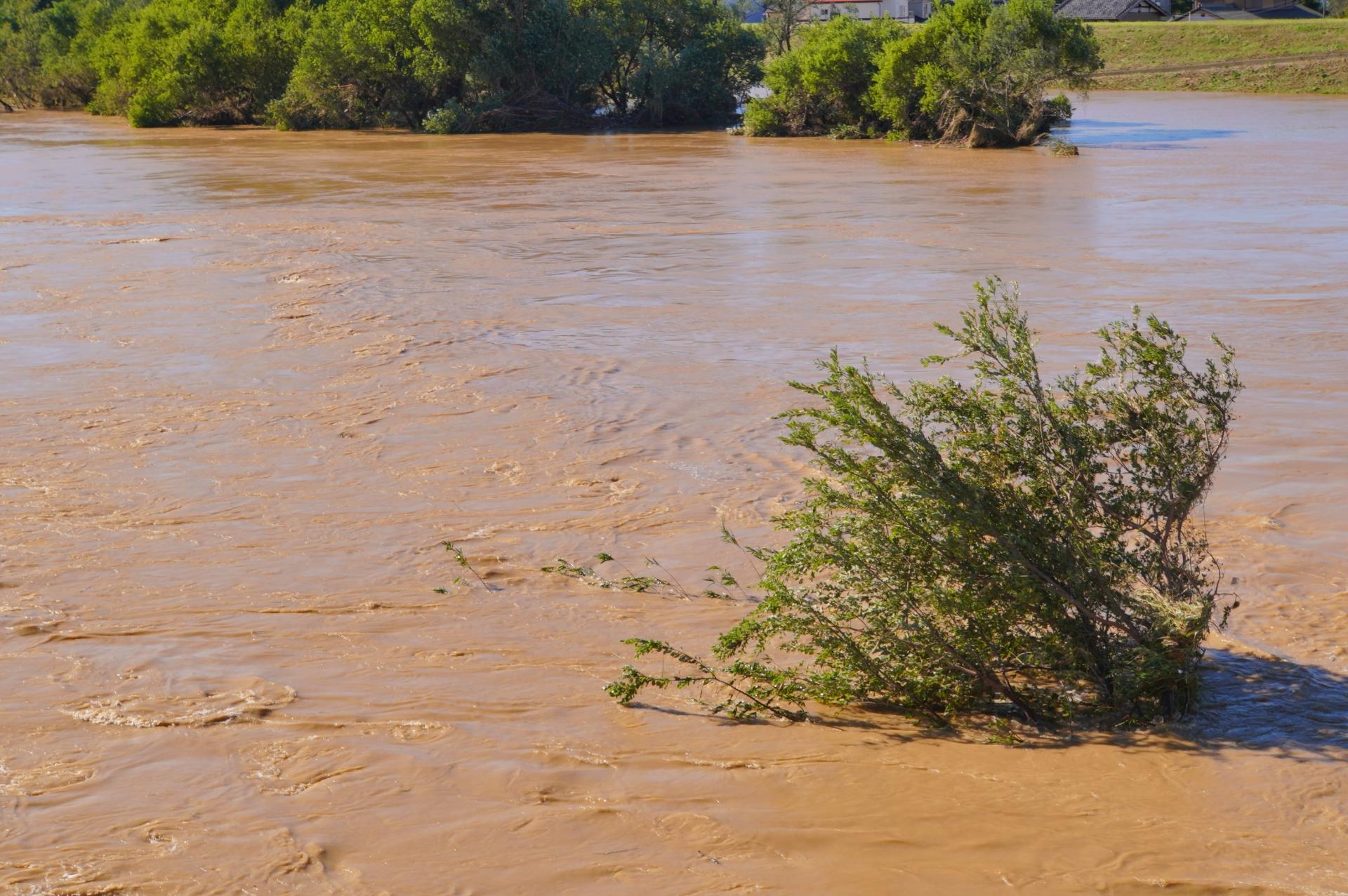 水害対策のリスクファイナンス